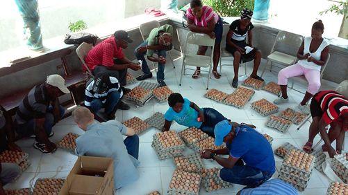 Agrisol – Kleine kippentelers van St. Marc zoeken het mooiste ei voor een wedstrijd