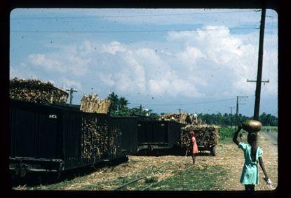 De suikerriettrein van de HASCO